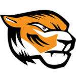 Domžale Tigers
